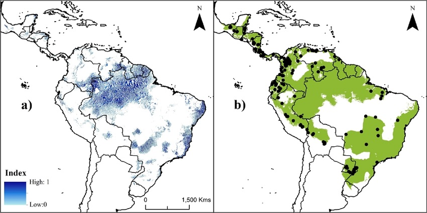 Estimating the potential distribution and conservation priorities of on