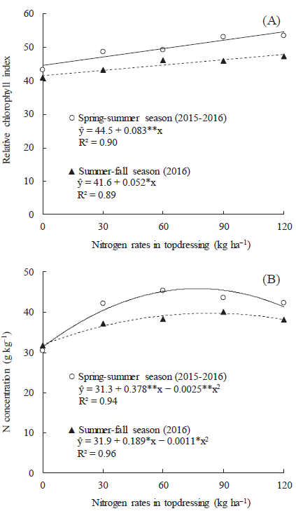 Can co-inoculation of Rhizobium tropici and Azospirillum brasilense