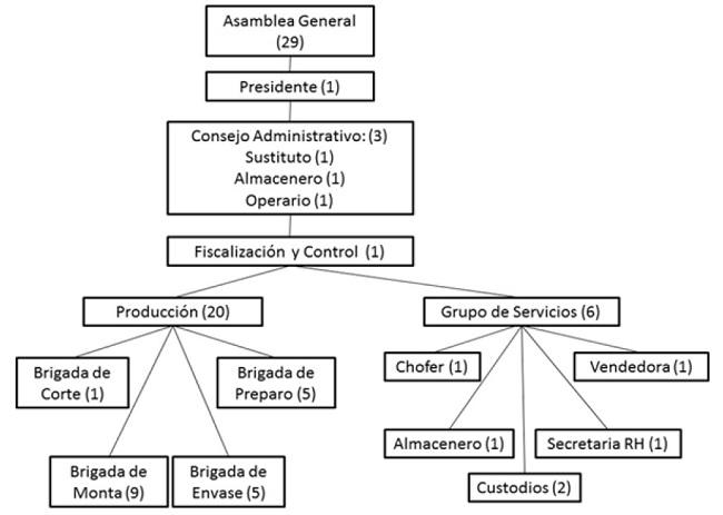 Diagnóstico De La Gestión Del Capital Humano De La